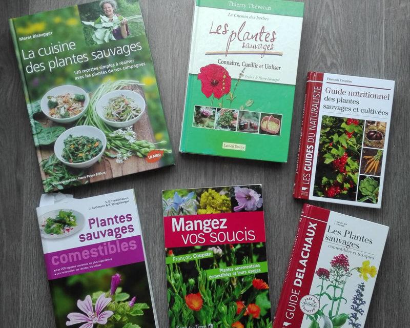 Mélanie Lavigne, 11 livres de référrences