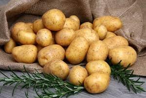 """j'ai la patate, t'as la patate, on a la patate !!!"""